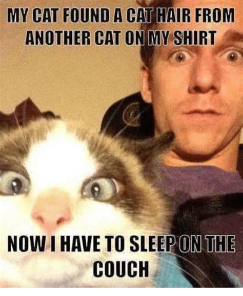 sleep meme 25 best memes about grumpy cat and sleeping grumpy cat