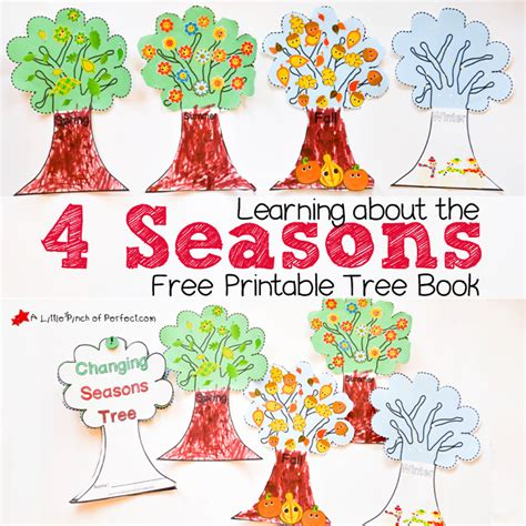 four walks in weather books 4 seasons nature tree craft for
