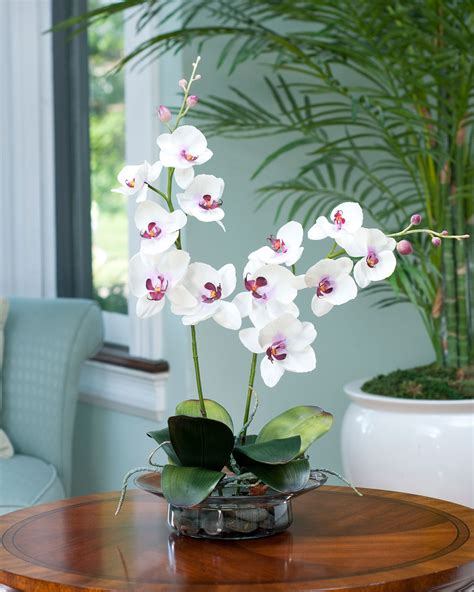 enhance your room decor with phalaenopsis silk orchid arrangement at petals