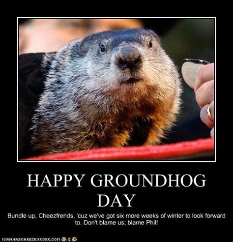 groundhog day jokes happy groundhog day rub mint