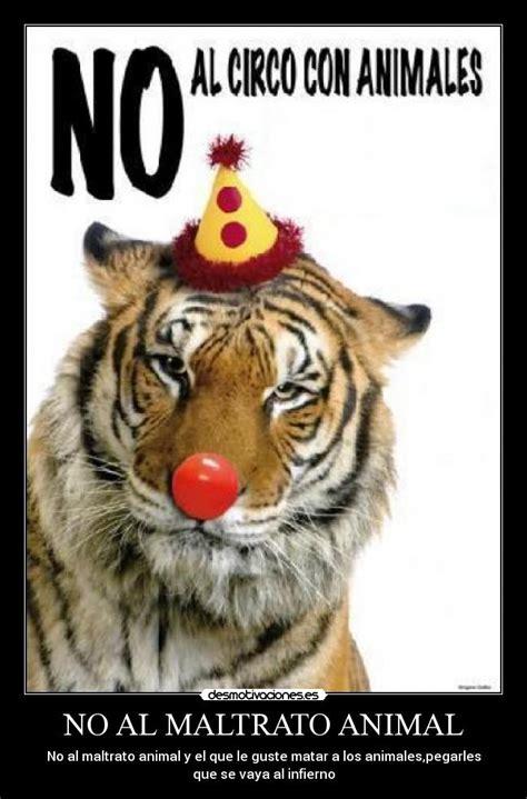 no maltrato animal no al maltrato animal desmotivaciones