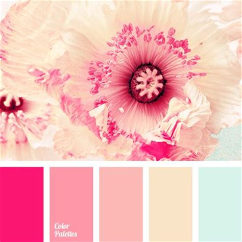pink is a combination of what colors 17 best ideas about pink color palettes on pinterest