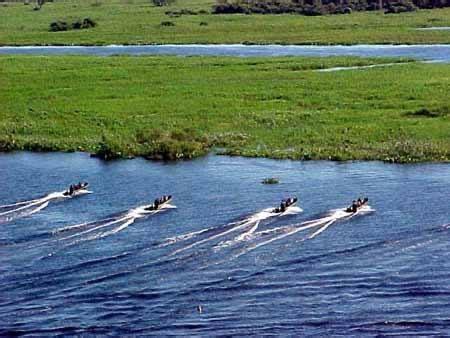 il ladario est 225 gio b 225 sico do combatente do pantanal mudamos de casa