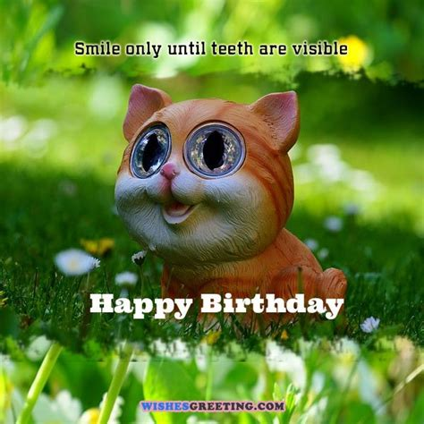 silly happy birthday images 105 birthday wishes and messages wishesgreeting