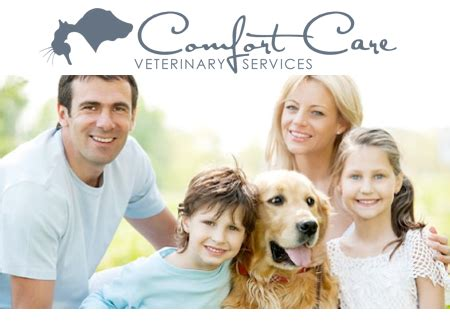 care and comfort vet comfort care veterinary services offer oywhatadeal detroit