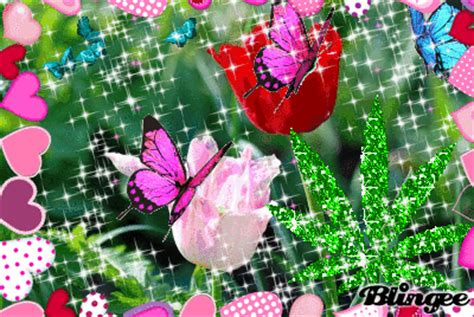 Imagenes De Mariposas Que Brillen | mariposas fotograf 237 a 131628317 blingee com