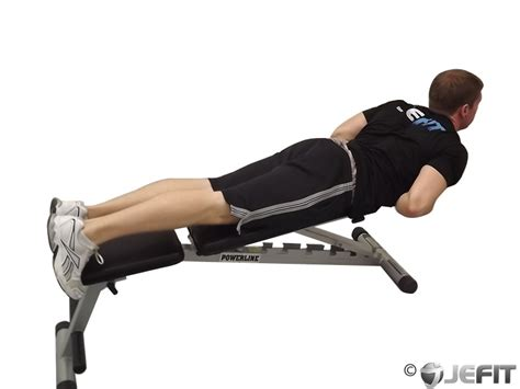 bench for back exercises hyperextensions with no bench exercise database jefit