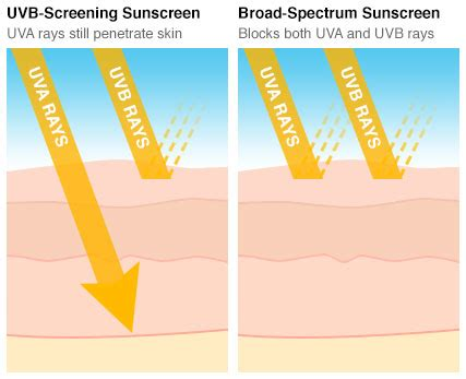 sunscreen spf and acne acne org