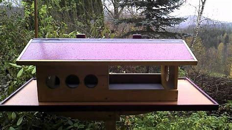 speisekammer vogelhaus vogelfutterhaus holz selber bauen bvrao