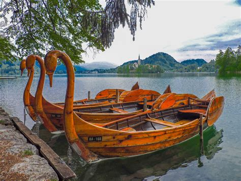 what to do at 7 things to do at lake bled