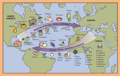 columbian exchange map columbian exchange map worksheet www pixshark images galleries with a bite