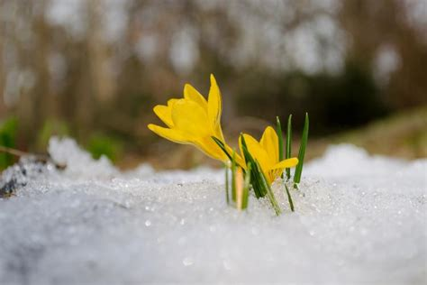 10 Things About the March Equinox