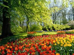 Pics Of Flower Gardens Beautiful Flower Garden Wallpapers 1 Trendingsiny