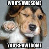 who s awesome you re who s awesome you re awesome who s awesome meme