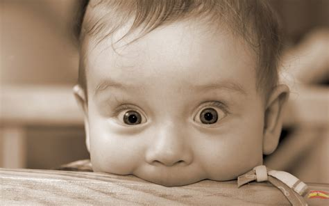 lovely wallpapers small cute baby wallpapers