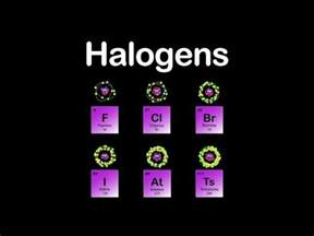 halogens halogens halogens periodic table