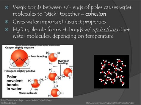 ppt chapter 5 water and seawater powerpoint presentation