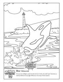 killer whale coloring pages killer whales coloring pages az coloring pages