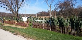 milwaukee and southeastern wisconsin christmas tree farms