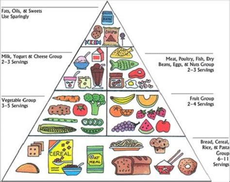 sleeping pattern in spanish food pyramid diagram