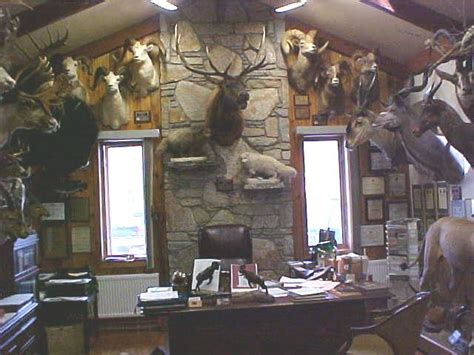 trophy rooms taxidermy trophy rooms related keywords taxidermy trophy rooms keywords keywordsking
