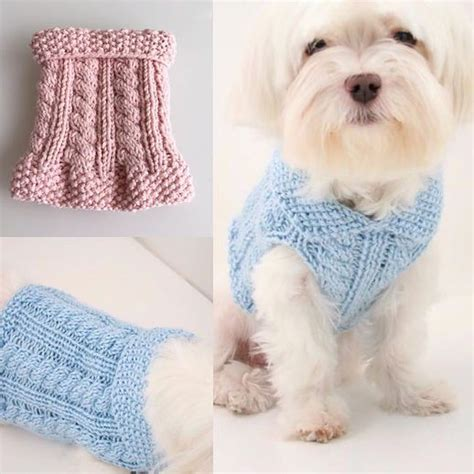 pattern for dog sweaters free dog diy knitting cute little dog sweaters for charity