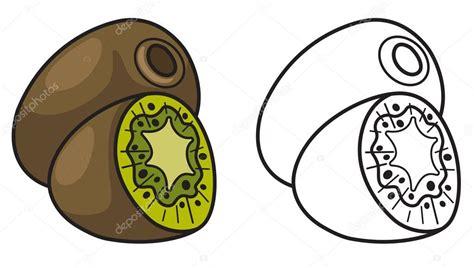 Imagenes De Kiwi En Blanco Y Negro | color y blanco y negro kiwi para colorear libro vector