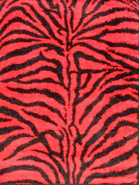 shag zebra rug shaggy shag zebra turquoise white gray 5x7 area rug carpet ebay