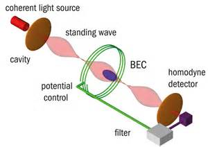 Bose Einstein Condensate Light Stopping The Speed Of Light Experiment The Physics Of