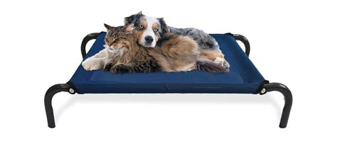 cooling dog bed cooling dog bed find the best elevated dog bed to keep your pet dog beds and costumes