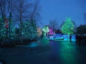 toledo zoo lights hours glowing blue picture of toledo zoo toledo tripadvisor