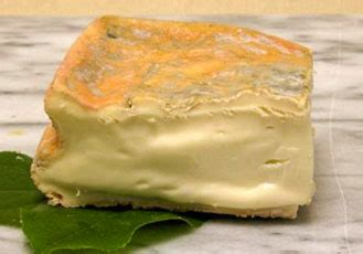 Definition Taleggio by Image Gallery Taleggio Cheese