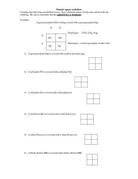 Genetics Practice Problems 3 Monohybrid Problems Worksheet 1 Answers by 14 Best Images Of Monohybrid Cross Worksheet Answer Key