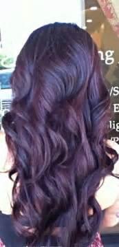burgundy purple hair color plum burgundy hair dye brown hairs