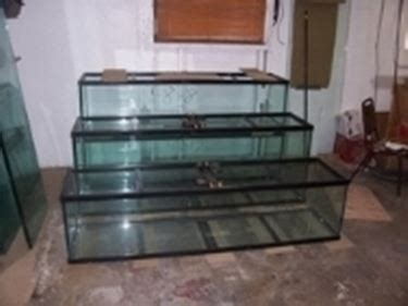 vasca acquario su misura acquari su misura acquari