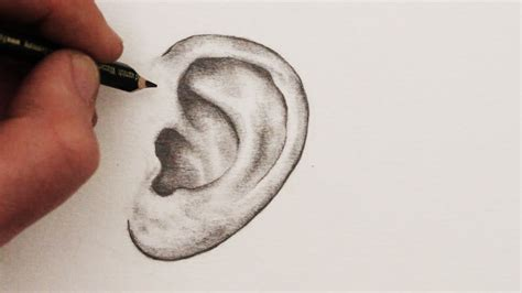 Drawing Ears by How To Draw Ears Step By Step