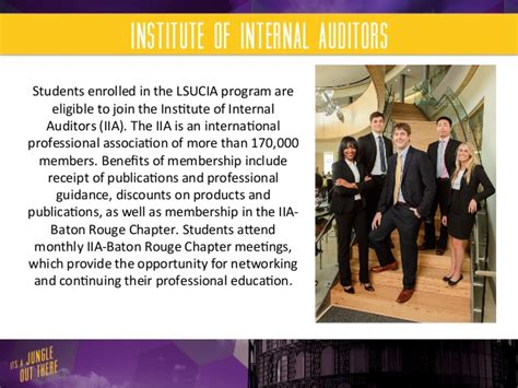 Lsu Mba Specializations by Lsu Flores Mba Audit Specialization