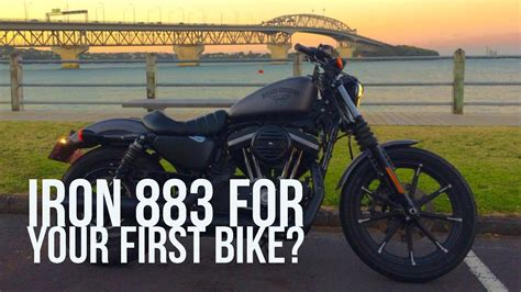 Harley Davidson For Beginners by Harley Davidson Iron 883 For A Beginner