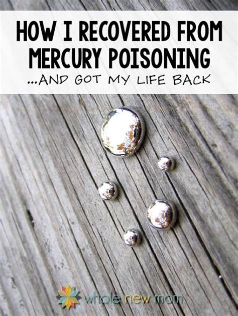 Mercury Poisoning Detox Diet by How I Recovered From Mercury Poisoning Family Home And