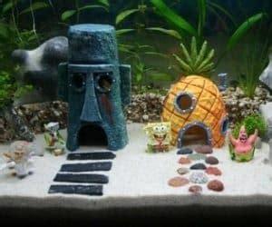 Akuarium Semut spongebob aquarium set