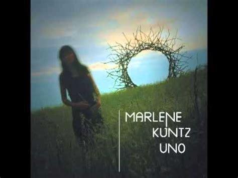 nuotando nell testo sapore di miele paroles marlene kuntz greatsong