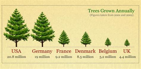 stats christmas trees tree facts and statistics infographic the fact site