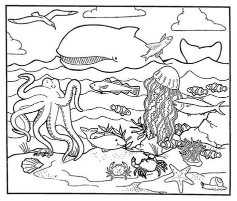 coloring pages of animals in their habitats animal habitats printables sea animals a healthy sea