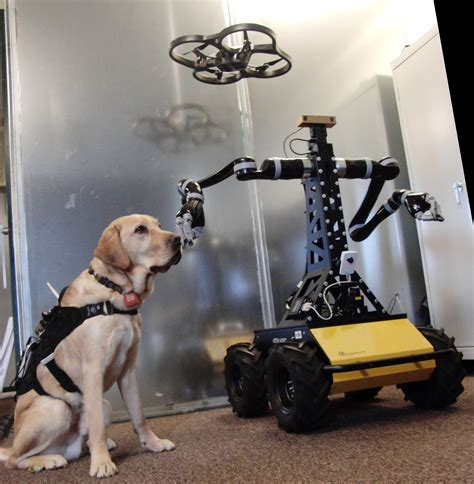 new technology for dogs dogs technology and the future of disaster response