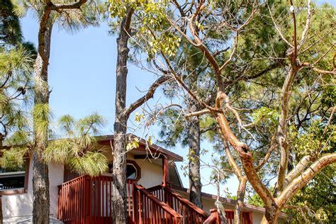 naples florida house rentals tree house rental in florida
