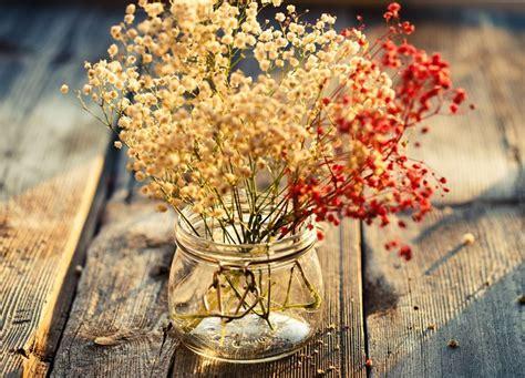 far seccare i fiori come seccare i fiori fiori secchi essicazione fiori