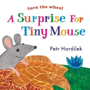 the tiny mouse books a for tiny mouse by petr hor 225 ä ek â reviews