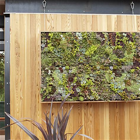 Diy Vertical Succulent Garden Modern Cottage How To Make Vertical Succulent Gardens