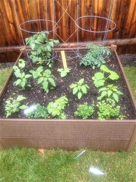 1000 ideas about raised garden bed kits on