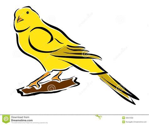 rhinelander canaries stock photo royalty wellow canary royalty free stock photos image 30647958